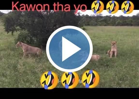 kon tha yo thumbnail